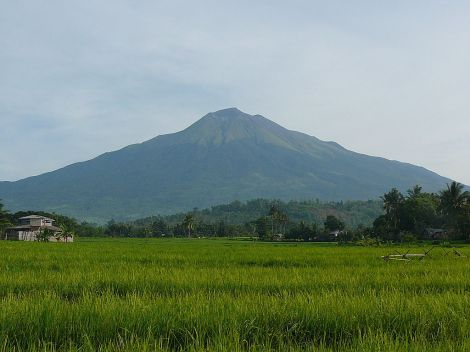 Mount Kanlaon towers above the sugar fields of Negros